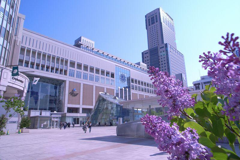 札幌駅のライラック