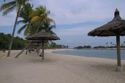 きれいではない浜辺