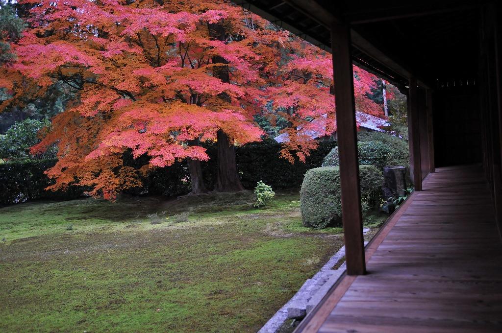2007/09/28京都AL935