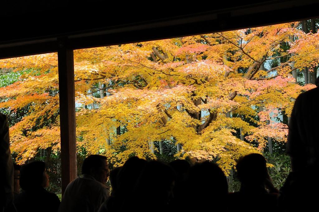 2007/09/28京都NL861