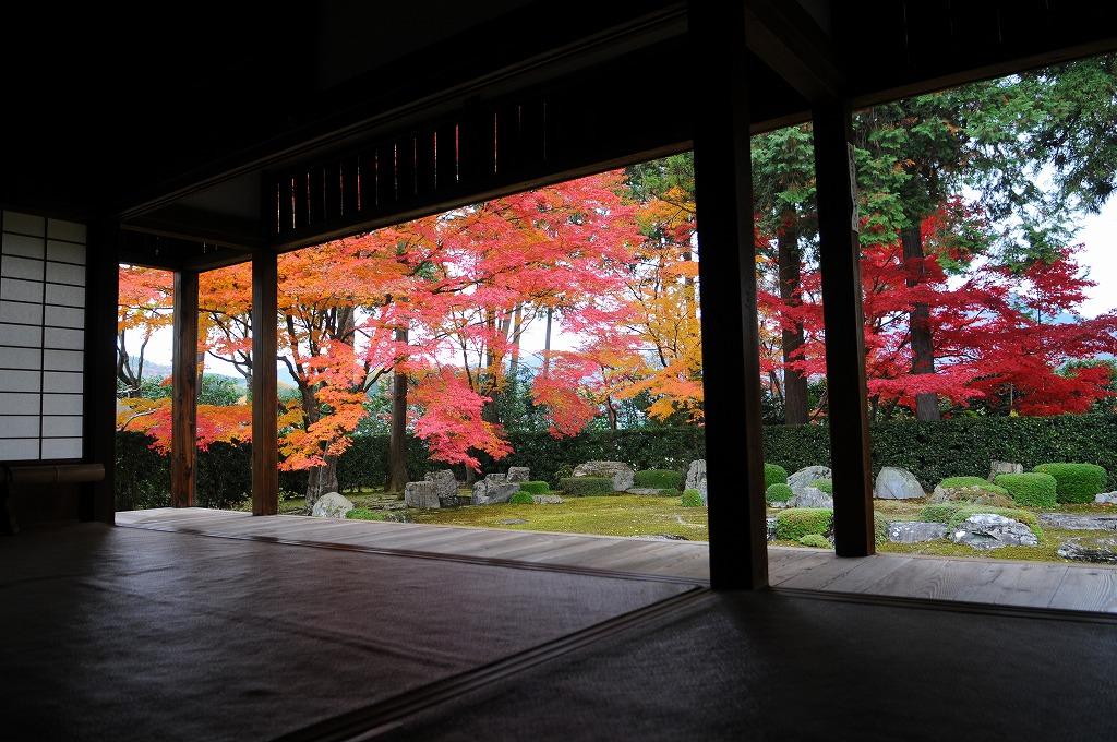 2007/09/28京都NL877