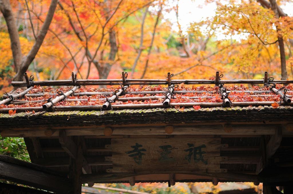 20071129京都祗王寺