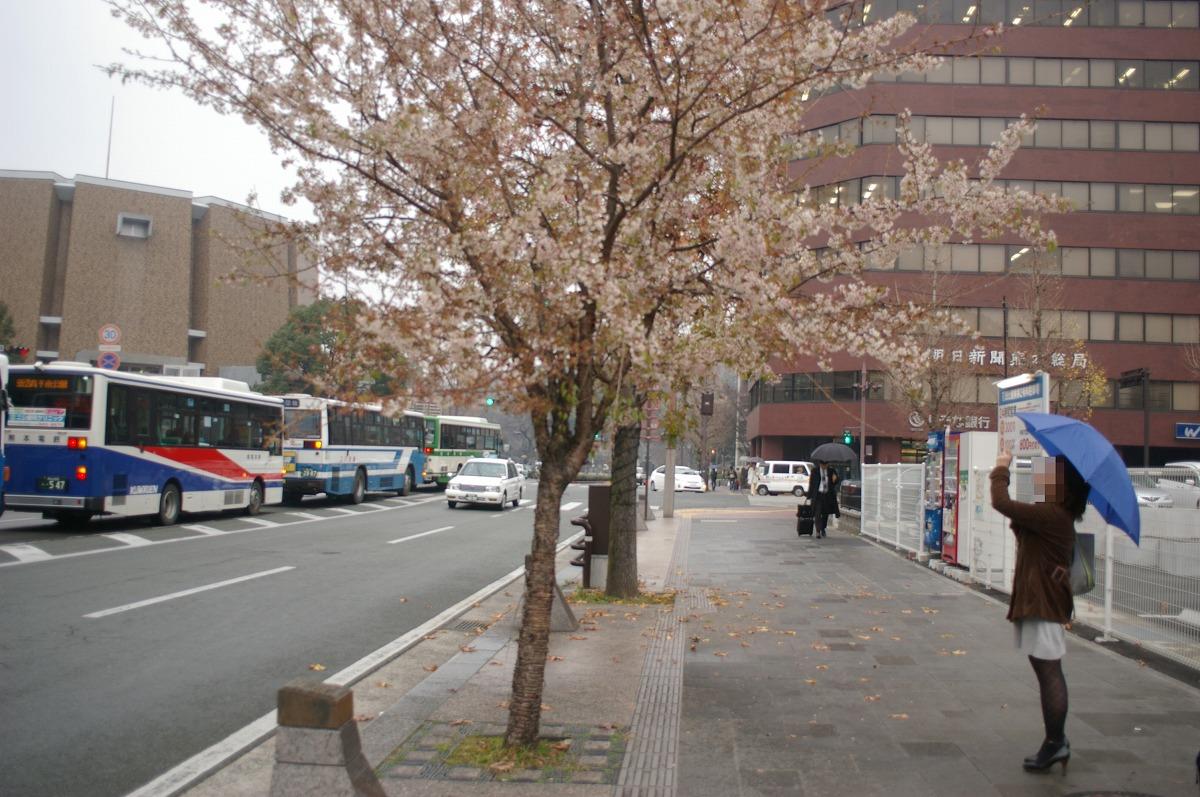 熊本5231