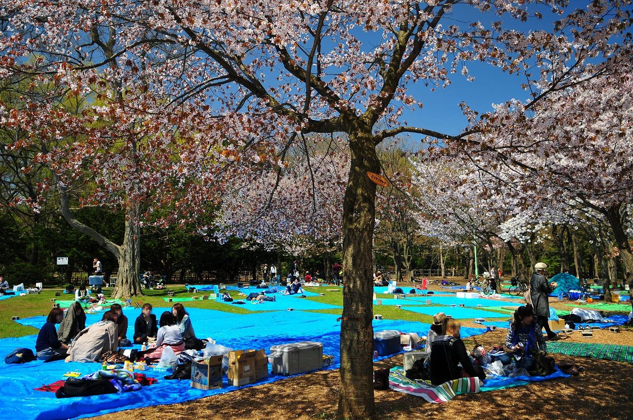丸山公園2246