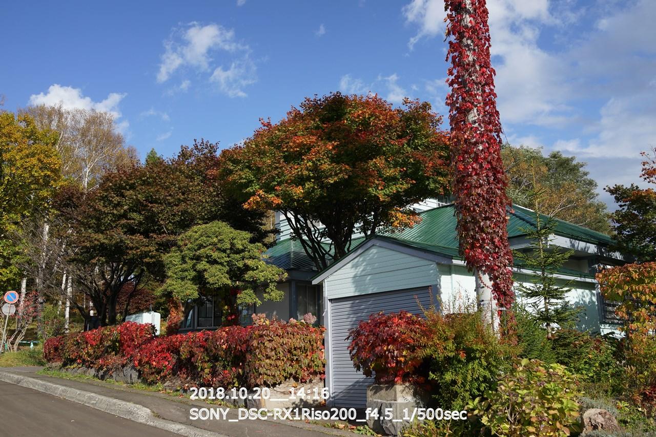 小樽公園の裏入口