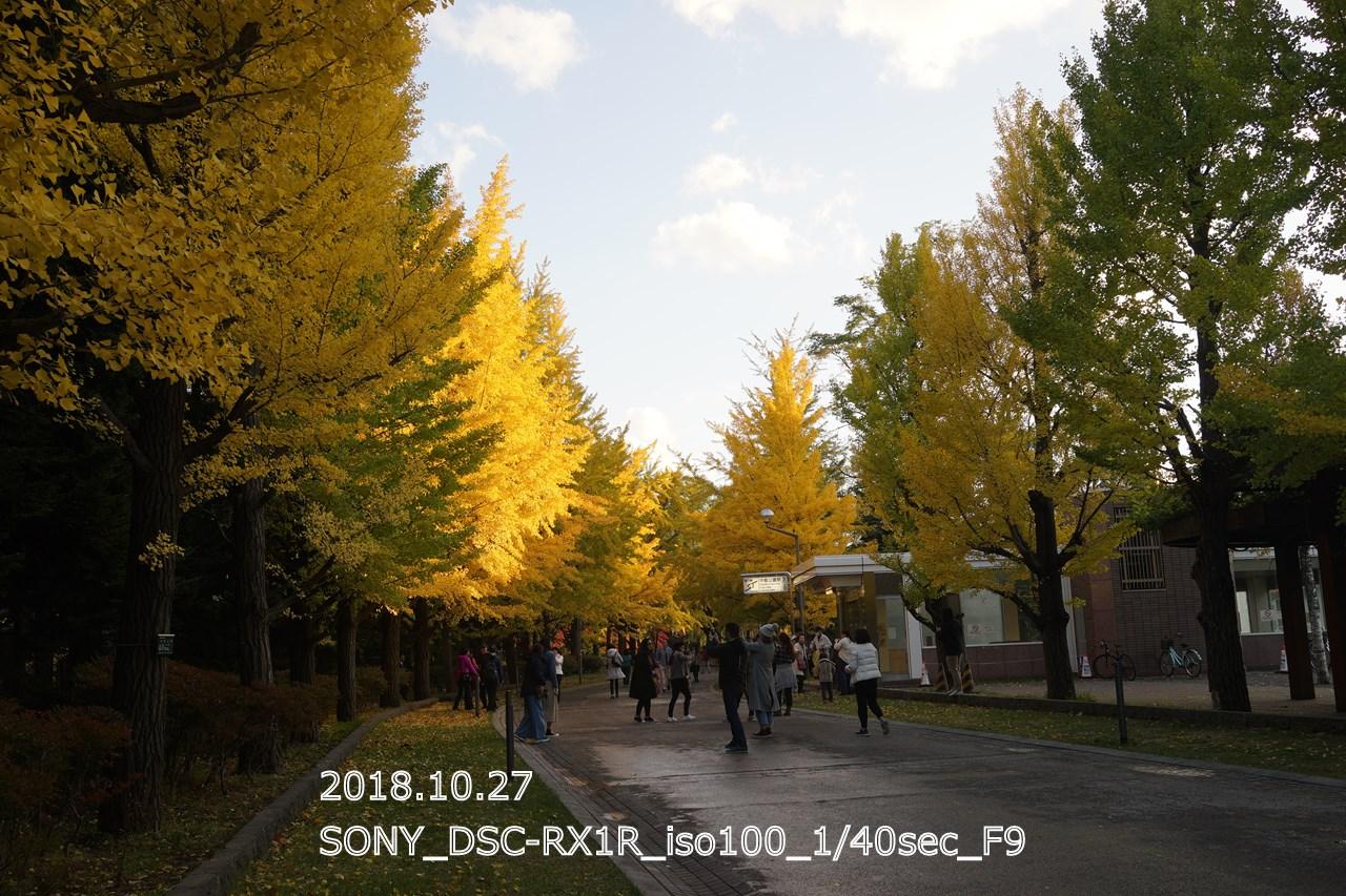 中島公園地下鉄駅前の通路