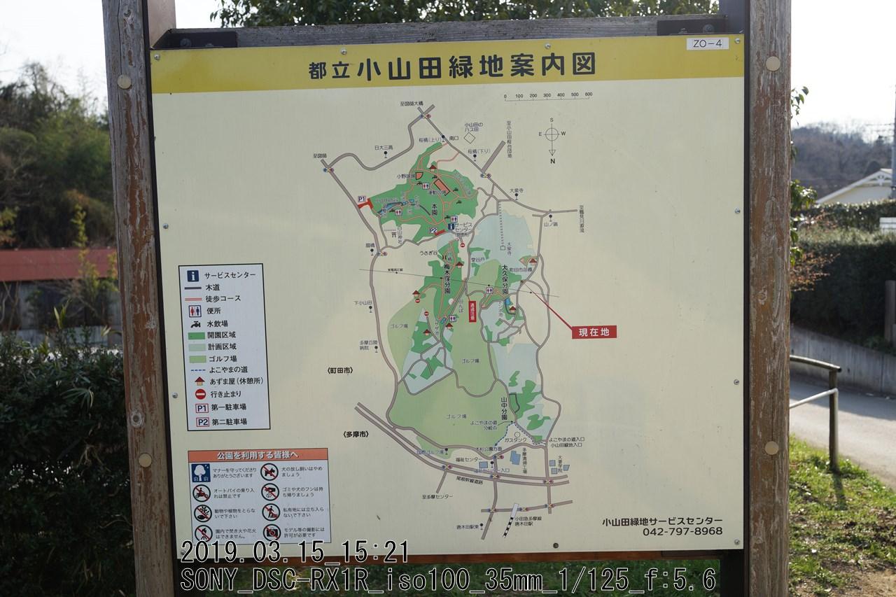 小山田緑地案内図