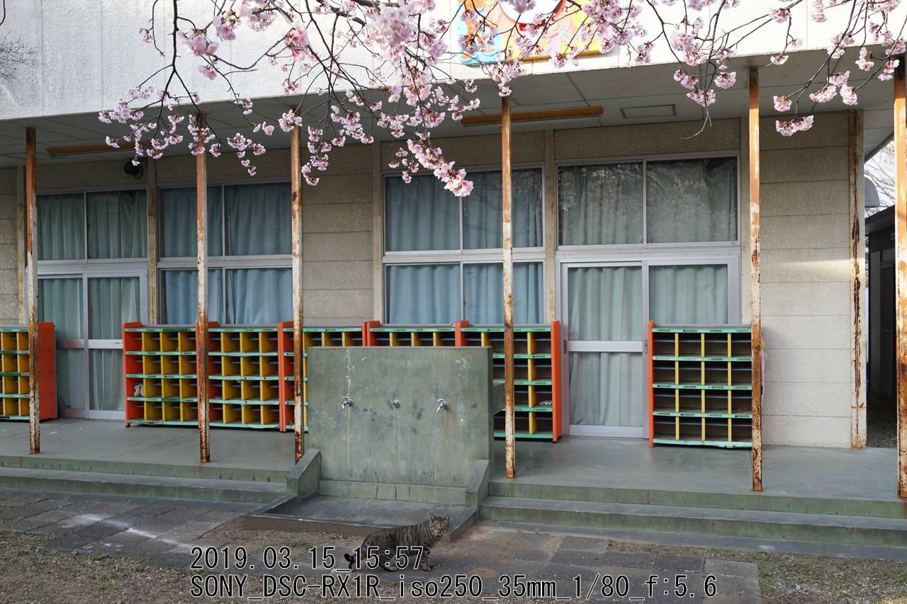 小山田桜台団地学童保育クラブ