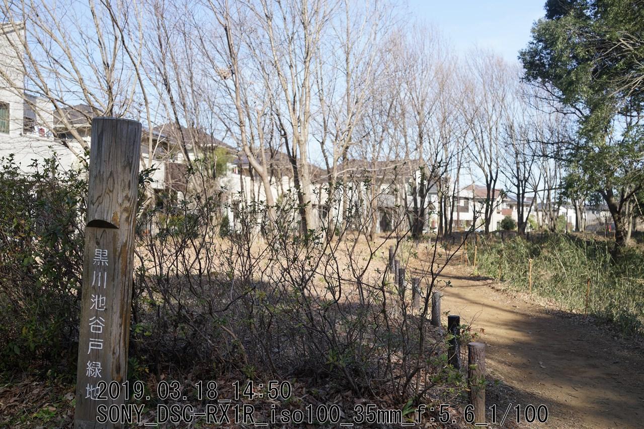 DSC09812.jpg黒川の緑地遊歩道