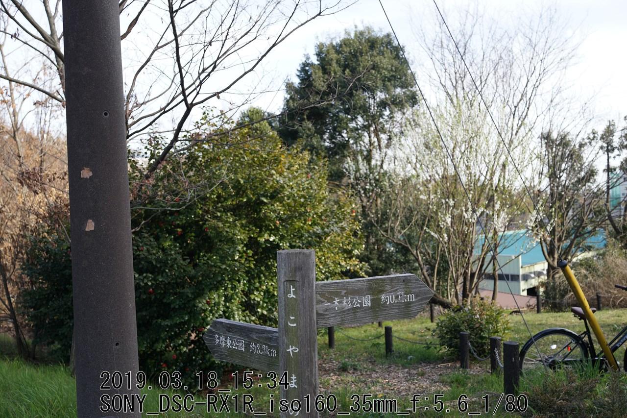 DSC09818.jpg多摩よこやまの道(小野路口)